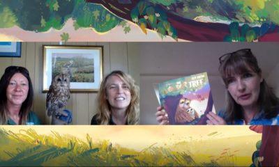 The Wonder Tree author Teresa Heapy meets Screech Owl Wildlife Park